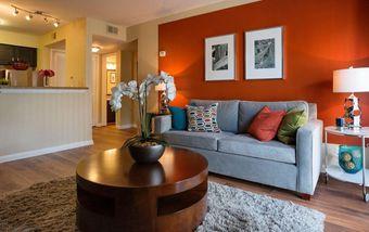 Views on the Cumberland I & II apartments for rent at AptAmigo