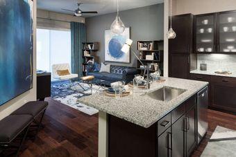 Lyra on McKinney apartments for rent at AptAmigo